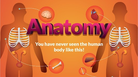 Arloon Anatomy v1.3.3