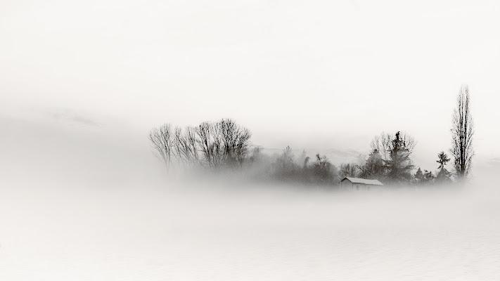Bianco d'inverno di EnzoFornione
