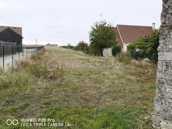 terrain à Amponville (77)