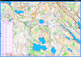 Photo: Walking with a Karttapullautin map for three hours in the northeastern part of Nuuksio national park.