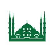 Cami Bul