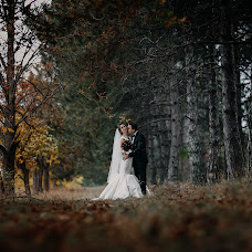 Wedding photographer Aleksey Chipchiu (mailin315). Photo of 27.05.2018