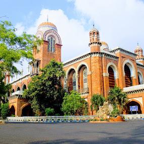 University of Madras by Abhisek Datta - Buildings & Architecture Office Buildings & Hotels ( university, madras, chennai, tamil nadu )