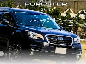 フォレスター SJ5 E型 2.0i-L 6MT 2017年式のカスタム事例画像 Dominoさんの2020年03月22日11:26の投稿