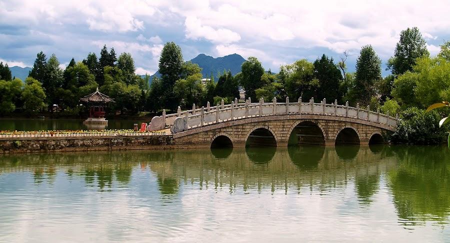 Bridge in a park by Ester Ayerdi - City,  Street & Park  City Parks ( park, lake, stone bridge, bridge, city park, chinese bridge, chinese, china,  )