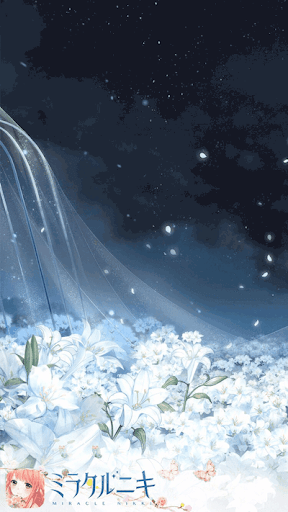 精霊花の海