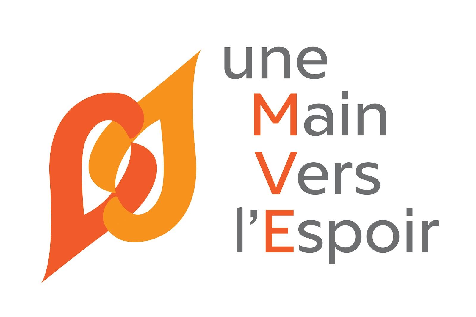 logo + MVE en gris.jpg