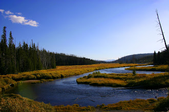 Photo: Yellowstone National Park in the Fall, Wyoming