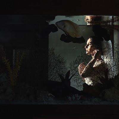 Свадебный фотограф Вячеслав Апальков (Observer). Фотография от 01.01.1970