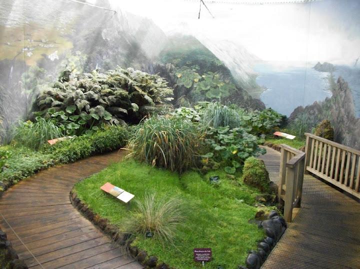 Antarctic_Garden_Hobart_BG.jpg