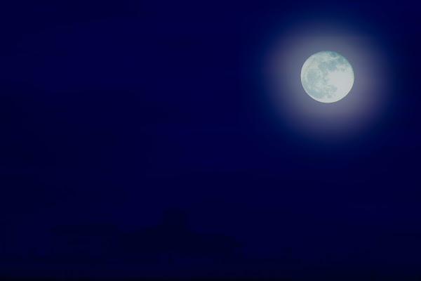 BLUE MOON  di Saltini Rino