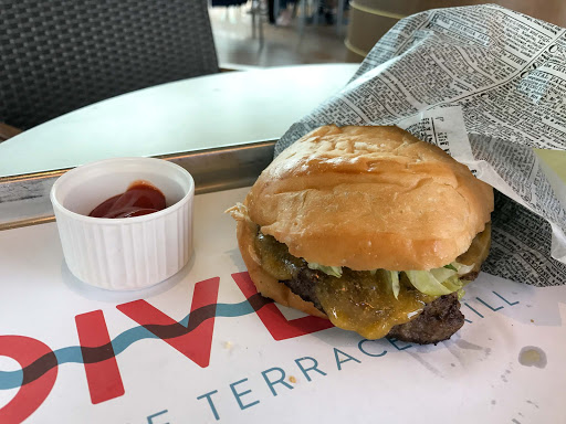 dive-in-hamburger.jpg - A hamburger at the Dive-In at the Terrance Grill on the Holland America ship Oosterdam.