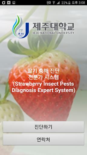 딸기 충해 진단 전문가 시스템