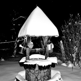 well by Radisa Miljkovic - Black & White Objects & Still Life