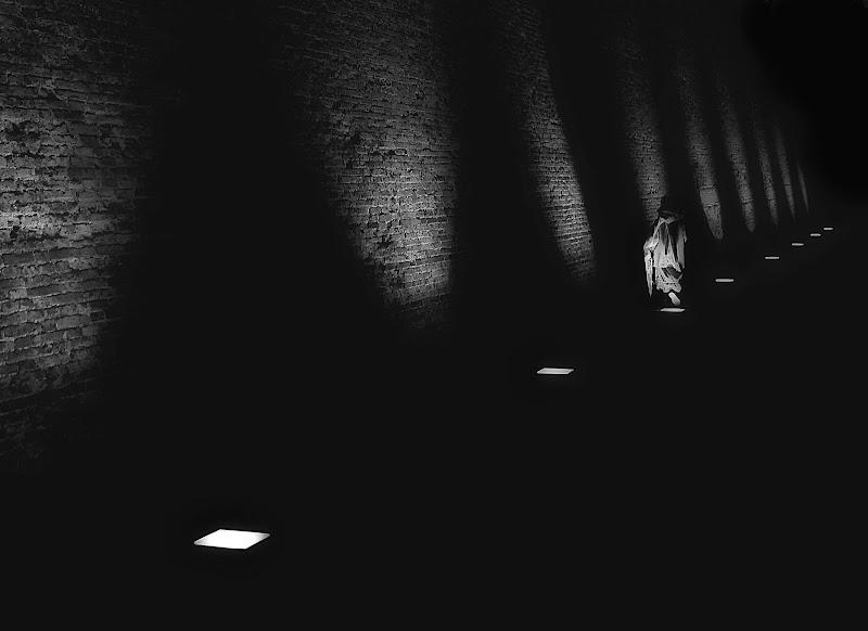 segui la luce di mousix