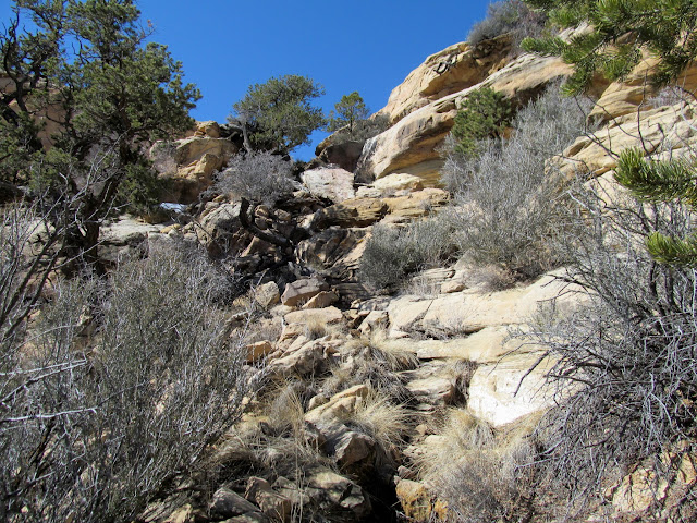Final stretch of trail