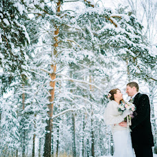 Wedding photographer Aleksey Novopashin (ALno). Photo of 09.11.2015