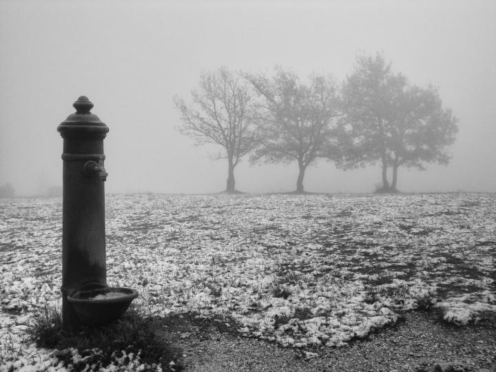 In pieno inverno di fabrizioolivi