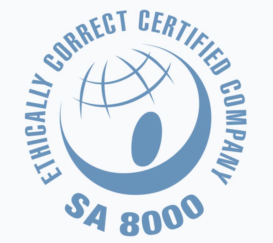 Risultati immagini per sa 8000 logo