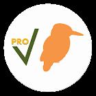 Birds Check Pro icon