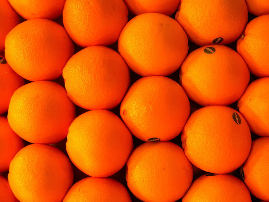 oranges di caterina_kitta