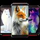 Fox Wallpaper HD Download for PC Windows 10/8/7
