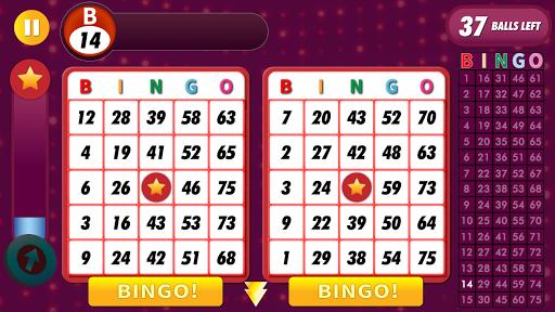 Bingo Classic Game - Offline Free apkpoly screenshots 11