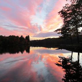 Sunset Over Bunganut Lake by Lynne Miller - Landscapes Sunsets & Sunrises ( bunganut lake, sunset, lynne p. miller, pink, lyman maine,  )
