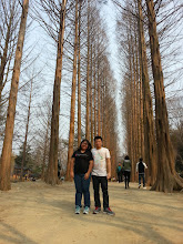 "Photo: This is the famous spot in the Koreanovela, ""Winter Sonata""."