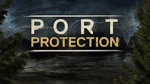 Port Protection thumbnail
