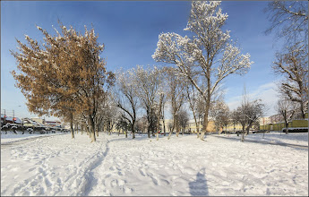 Photo: Turda - Calea Victoriei, Mr.1 - parc - 2018.12.22