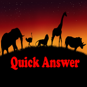 QuickAnswer