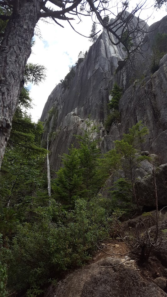 Looking Up At Squamish Buttress Lite
