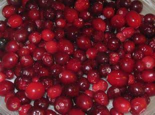 Creamy Cranberry Bars Recipe
