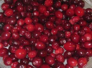 Creamy Cranberry Bars