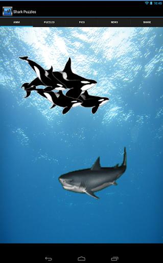 Shark Puzzles