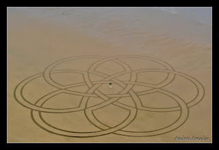 Photo: 'Celtic Knot', Ocean Beach, SF. My largest geometric design.