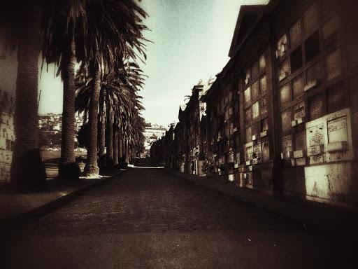 Calle interior del cementerio 3 de Playa Ancha