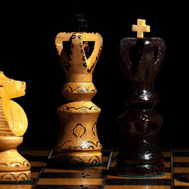 2 Kings  by Aleksander Cierpisz - Artistic Objects Other Objects ( wood, low key, chess-mate, horse, chess, white, shine, chessboard, win, game, kings, bokeh, king, war, crafted, knight, jumper, winning, wooden, dark, mate, pawn, black )