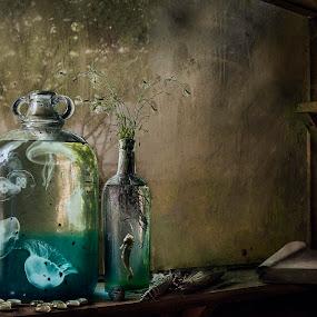 In Vitro by KT Allen - Digital Art Things ( shed, digital manipulation, digital art, bottles, composite, jellyfish, seahorse )