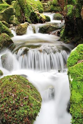 Acqua... Panning... di gadani's idea