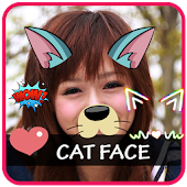 Cat Face Editor Photo