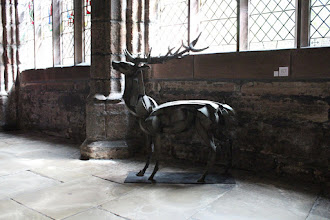 Photo: Stag by Sophie Dickens