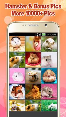Hamster Wallpapers - screenshot