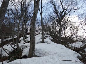 雪はなんとか繋がっている