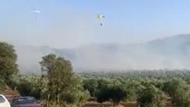 Captura del vídeo compartido por Infoca en su cuenta de Twitter.