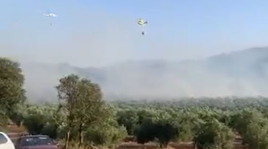 El fuego arrasa más de dos hectáreas de terreno en Bacares
