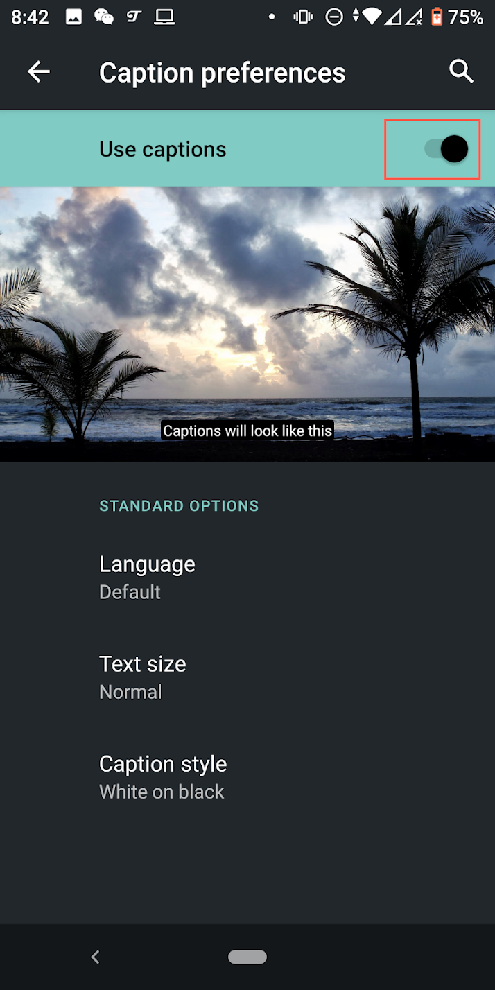 Toggle On Use captions