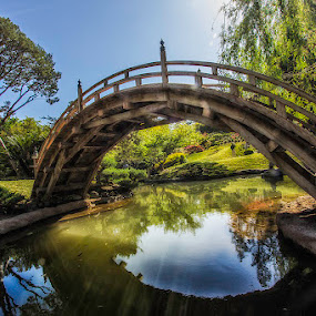 Japanese Garden Bridge by Jerome Obille - Buildings & Architecture Bridges & Suspended Structures ( water, reflection, japan, bridge, japanese, waterscapes, garden )