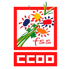 FSS CCOO icon